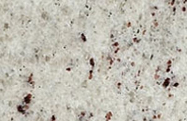Natural Granite Ambas White